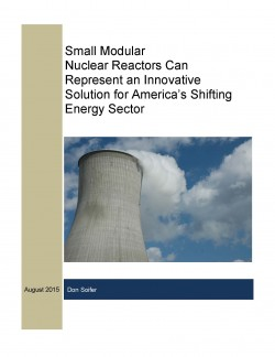 SMR Report_Cover Image